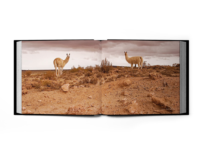 artisal-bolivia-2  libro